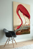 KEK Amsterdam Wooden Print  red flamingo