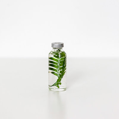 Slow Pharmacy plant specimen small  011