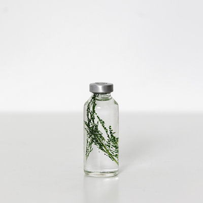 Slow Pharmacy plant specimen small 013