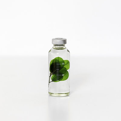 Slow Pharmacy plant specimen small 005