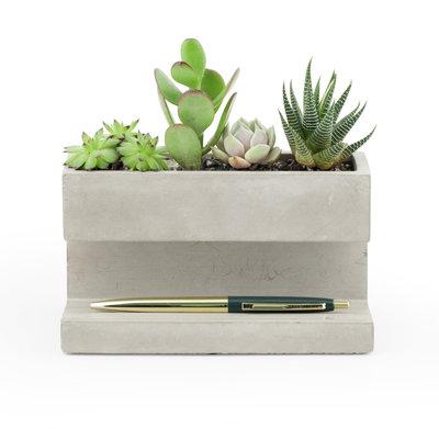 Pennenbak & planter beton large