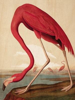 KEK Amsterdam print op hout Flamingo
