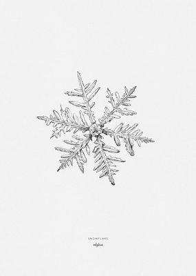 Inkylines Print Sneeuwvlok