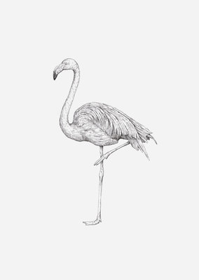 Inkylines Print Flamingo