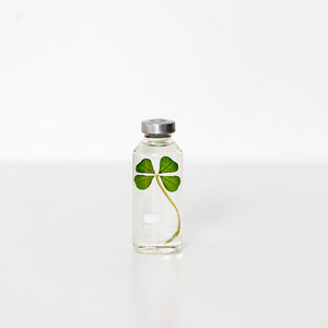 Slow Pharmacy Bottle PLant