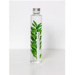 Slow Pharmacy plant specimen large 004