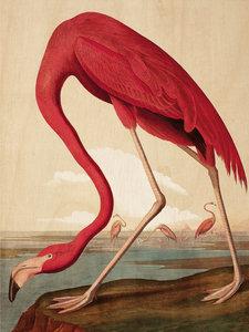 Kek Amsterdam Print on wood Flamingo