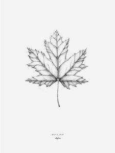 Inkylines Esdoornblad print